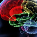 The Dynamics of Psychosis: Therapeutic Implications
